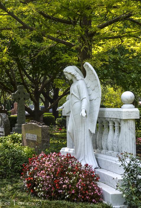 Cemetery Plantings