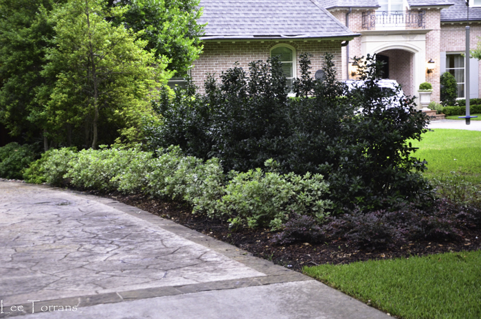 Dallas_Best_Landscaping_Lee_Ann_Torrans_Dallas_Gardening-2