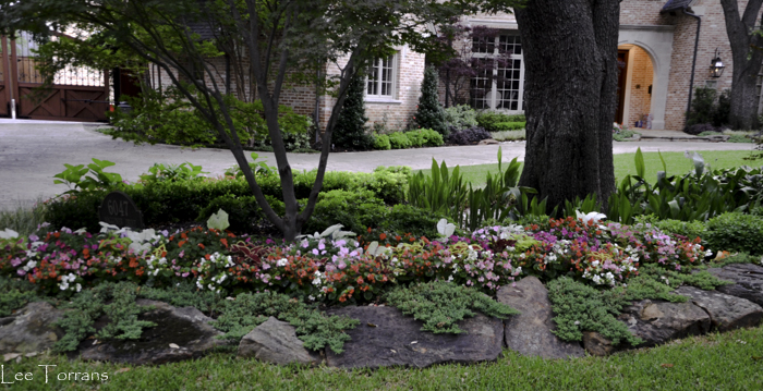 Dallas_Best_Landscaping_Lee_Ann_Torrans_Dallas_Gardening-3