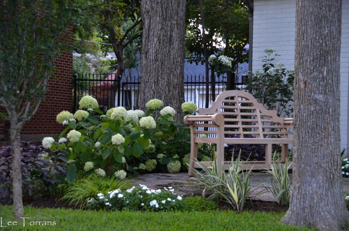 Lee Ann Torrans Gardening Texas Gardening