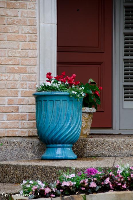 Blue flower pot for the front door.