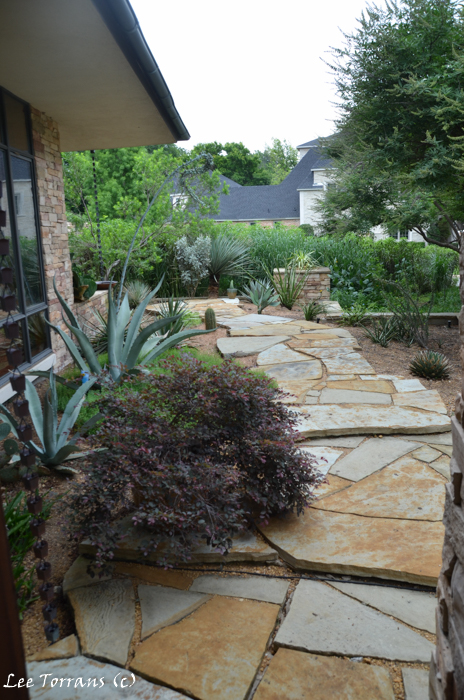 Native Plant Landscaping Texas