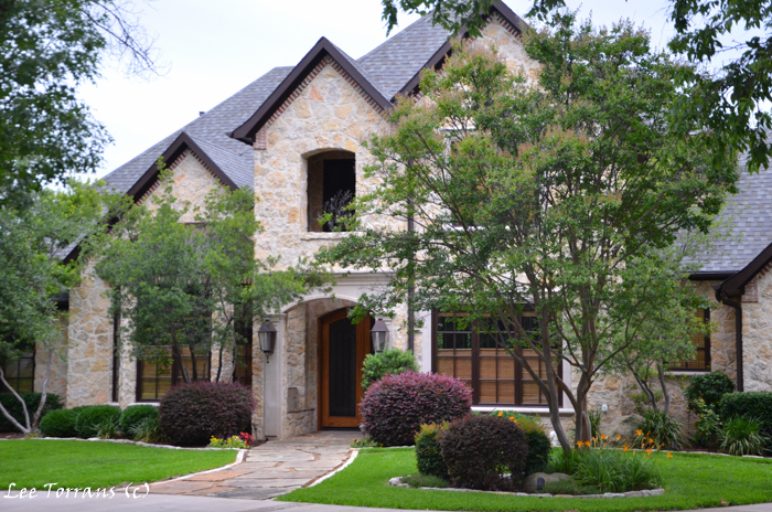 Oak-Tree-Landscape-Design-Texas-Dallas-Barberry-