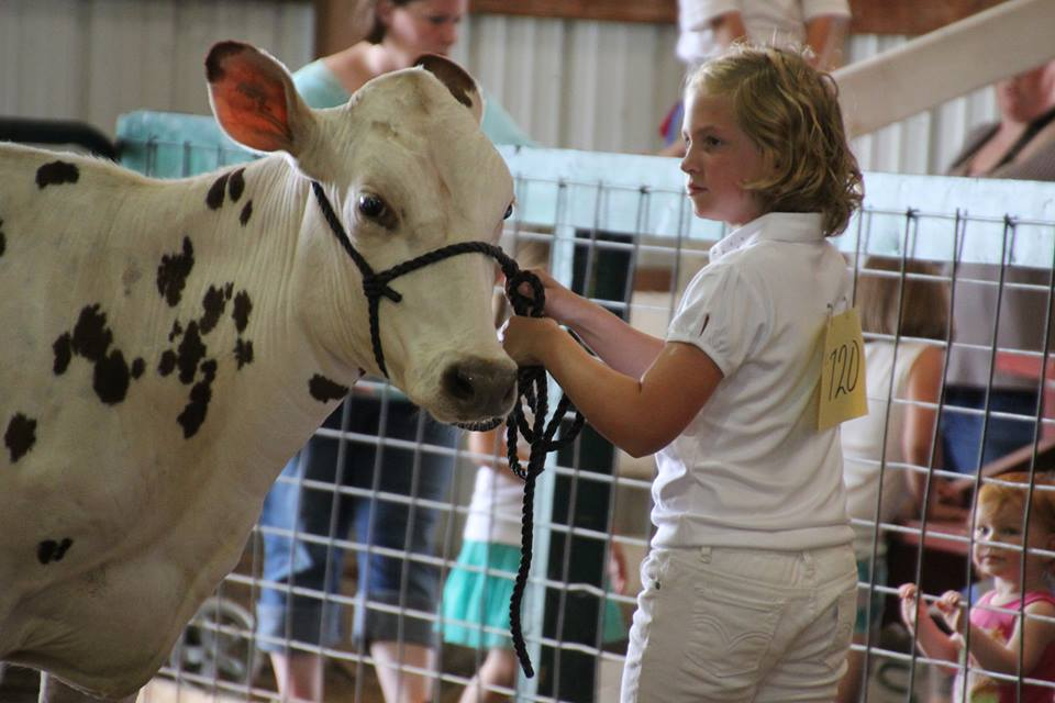 Lee County 4-H Fair