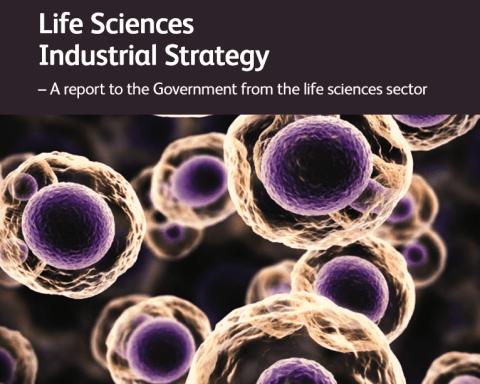 Digital Innovation Hubs Life Science