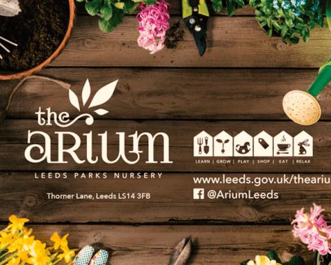 The Arium Leeds
