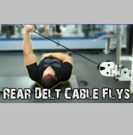 Bent Rear Delt Flys Over Cable