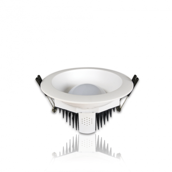 LED Down Light (7W, 12W)