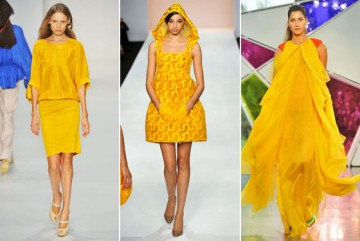 Mimosa in fashion