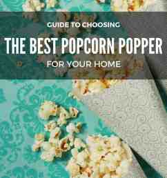 choosing the best popcorn poppers for your home [ 735 x 1103 Pixel ]