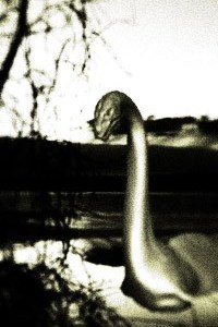 The Lake Leelanau Monster