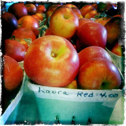 Laura-Red-from-Kilcherman-Farms