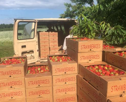 Back up the truck for Bardenhagen Strawberries!