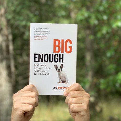 big enough book image