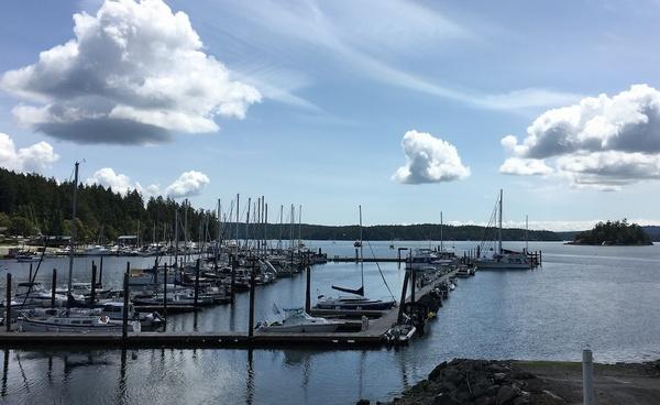 Our marina in Deer Harbor