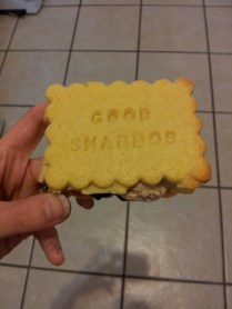Shabbos ice cream sandwich cookies