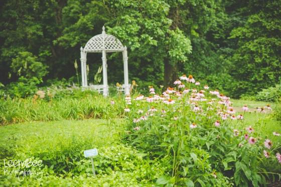 Park of Roses blog-5