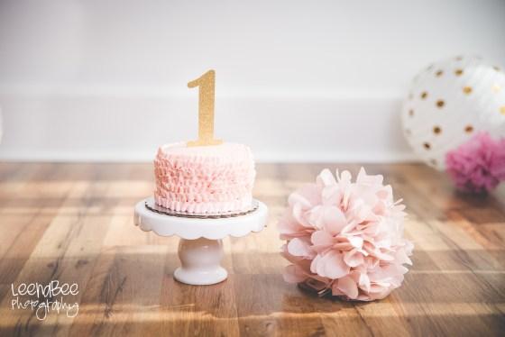 Veltri cake smash -6
