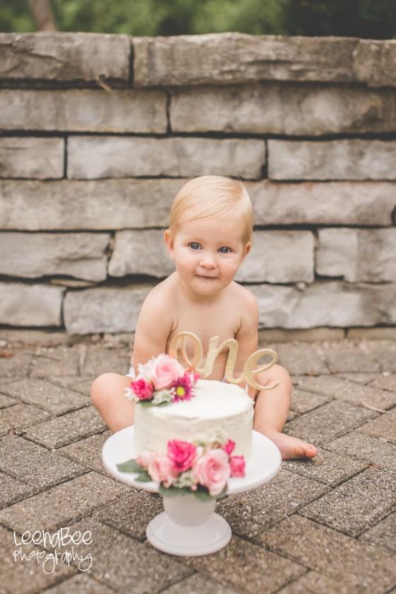 Dublin Family Photography Cake Smash-12