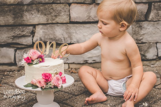 Dublin Family Photography Cake Smash-14