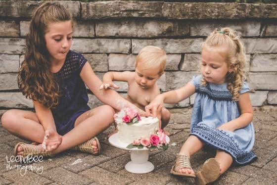 Dublin Family Photography Cake Smash-16