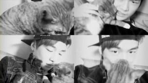 PRODUCE 101 _ Kang Daniel and his cats.mp4_000063096