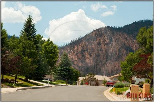 Mountain Shadows: Wilson Road