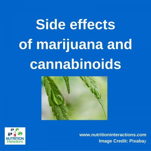 Side effects of marijuana and cannabinoids