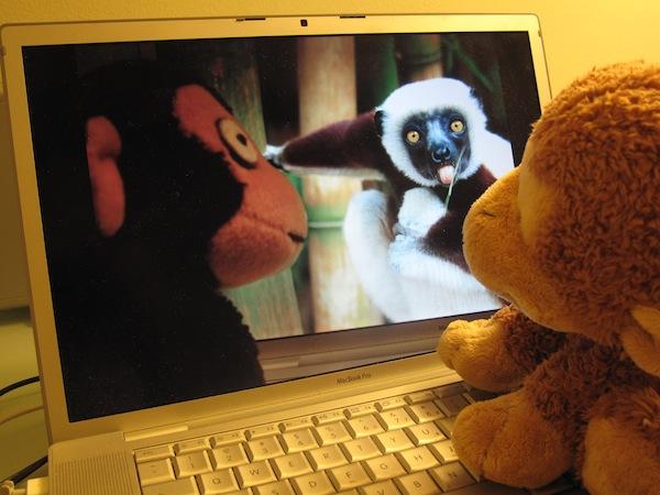 3_monkey