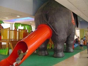 Elephant Butthole Slide
