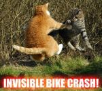 invisible_bike_crash_410