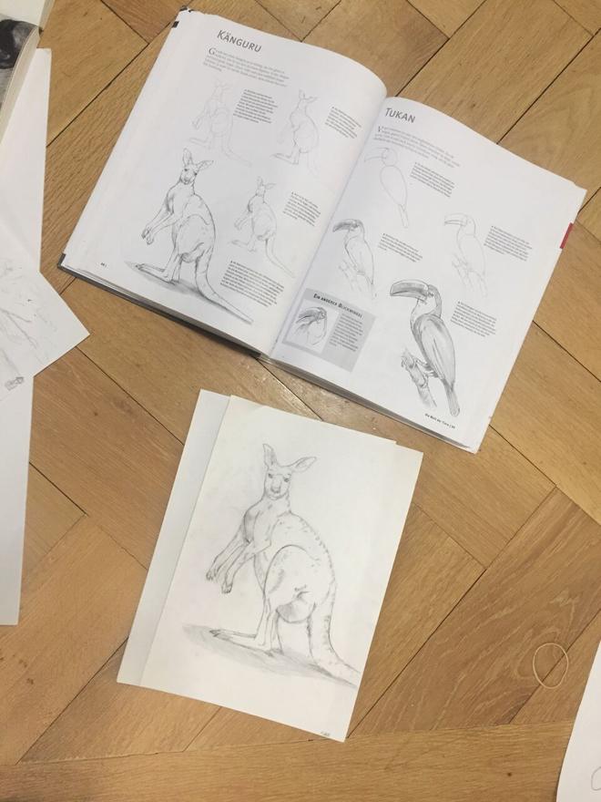 Die Kunst Des Zeichnens Zeichnen Lernen Schritt Fur Schritt Erklart In Einem Buch