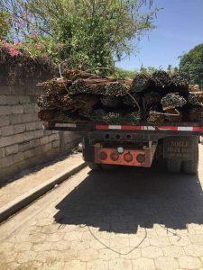 Haïti-Insécurité : Vol de camion suivi de mort d'homme à Croix-des-Bouquets