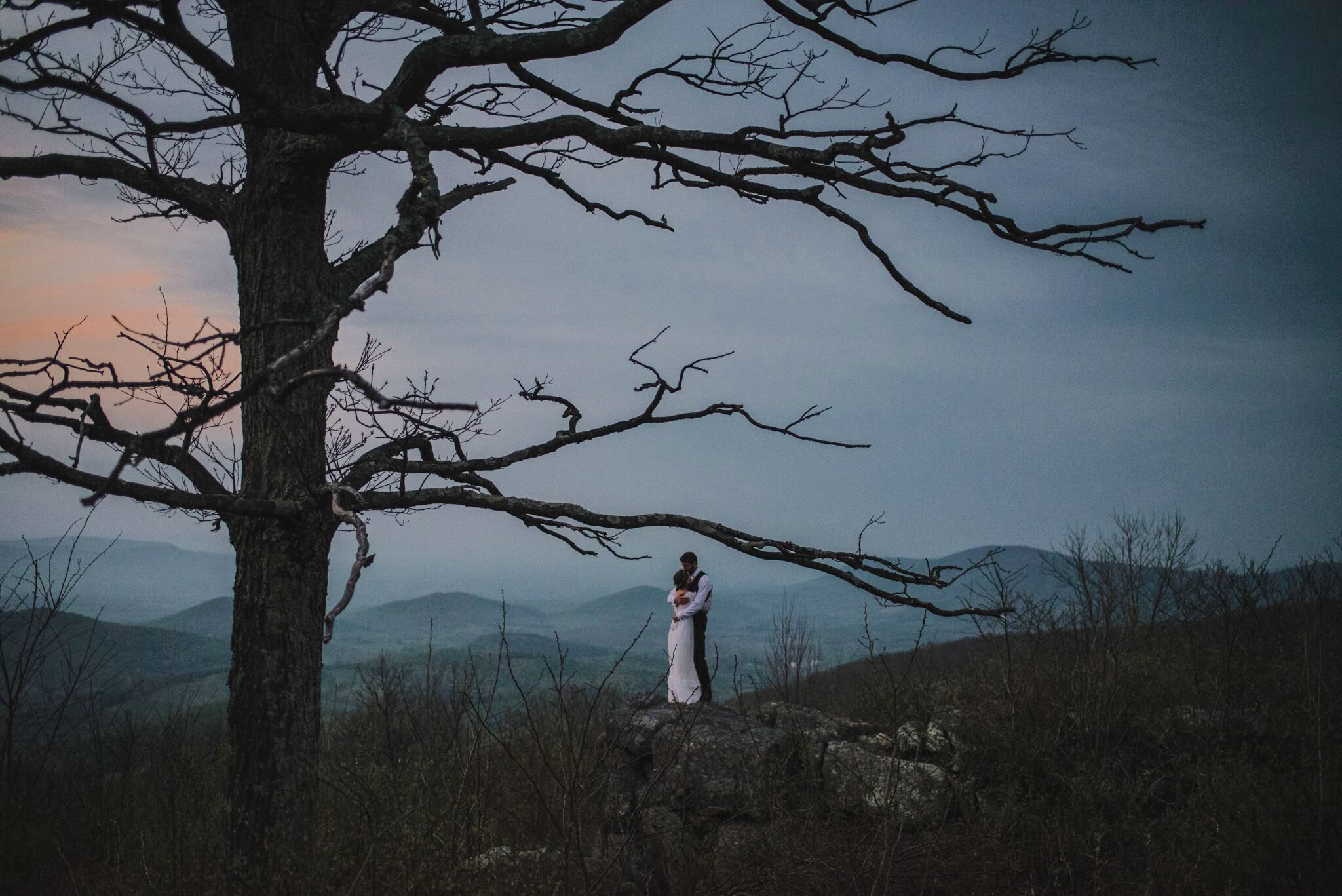 outdoor wedding and elopement venue LeFay Cottage at Little Washington