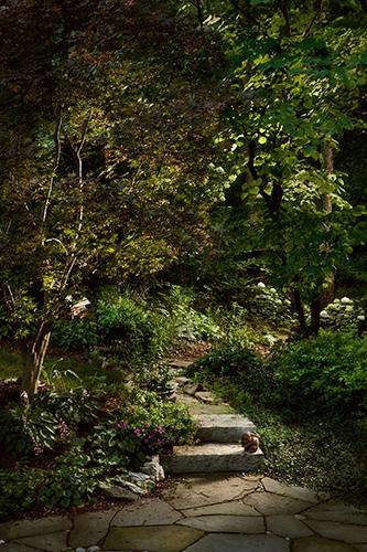 Garden path (With bunny)