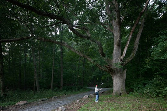 Preparing to flash an oak
