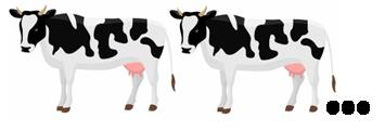 des vaches - le Français illustré