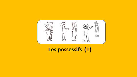Les possessifs (1) – vidéo 167