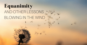 Equanimity and Other Lessons Blowing in the Wind