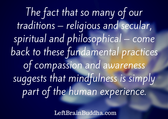 Human Experience and Mindfulness