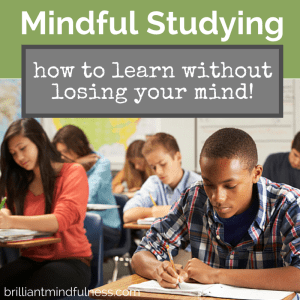Mindful Studying {a.k.a., how to learn without losing your mind!}