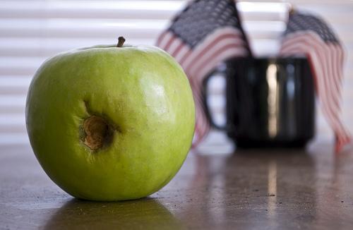 Rotten Apple - photo by Aaron Katchen