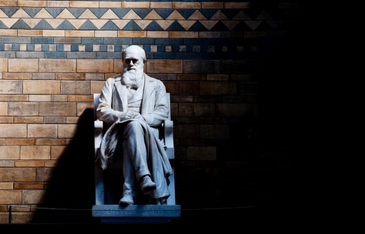 Charles Darwin - photo by C.G.P. Grey
