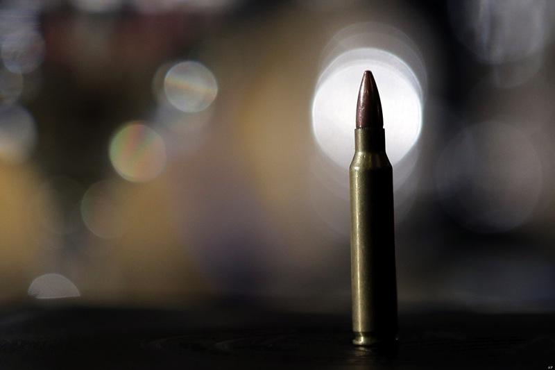 Gun control ammo
