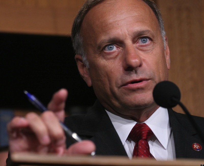 Representative steve king iowa