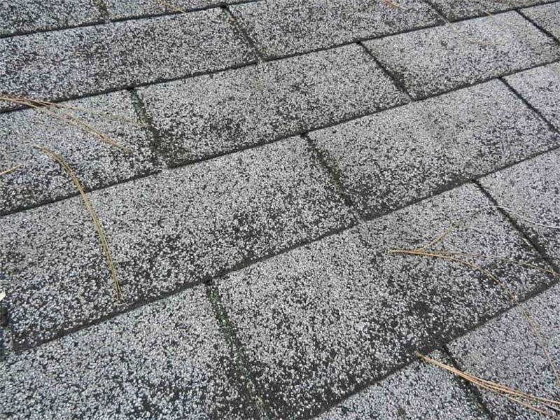 Roof Maintenance Moss Shingle Condition