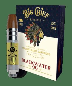 Big Chief'n