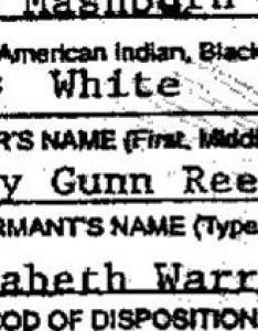Warren never associated with native americans also elizabeth american cherokee controversy rh elizabethwarrenwiki