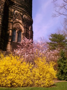 Garfield's monument, Lakeview Cemetery in Cleveland, OH.