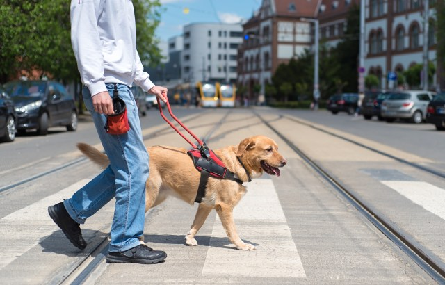 Service Animals & Federal Law